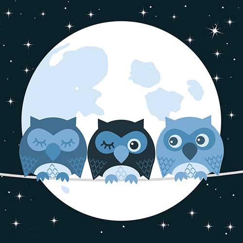 Night Owl Meditation - KMC Manchester
